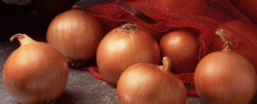 Hechizos de Amor con Cebolla y Alfileres